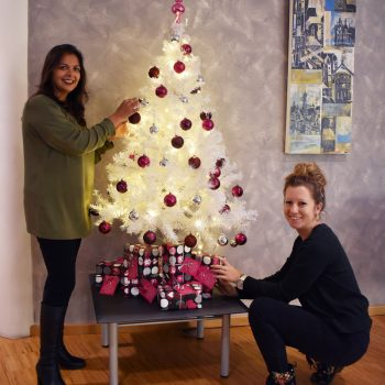 Soloplan christmas tree Kempten
